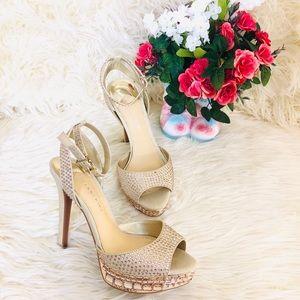 Gianni Bini Heels | Size: 6.5